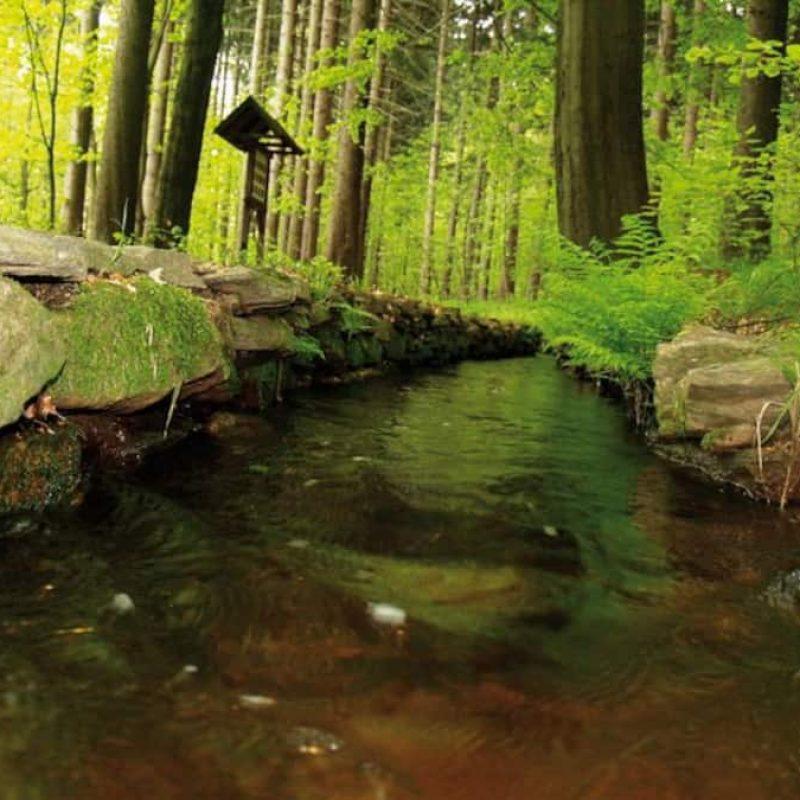 """Wandern am """"grünen Graben""""."""