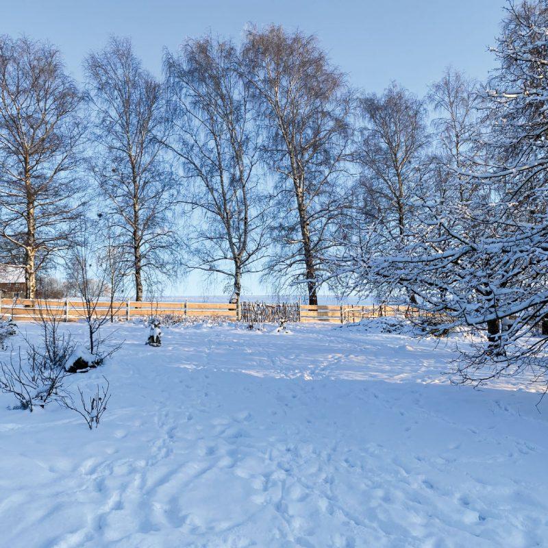 Weitläufiger Garten bietet im Winter eine große Spielfläche.