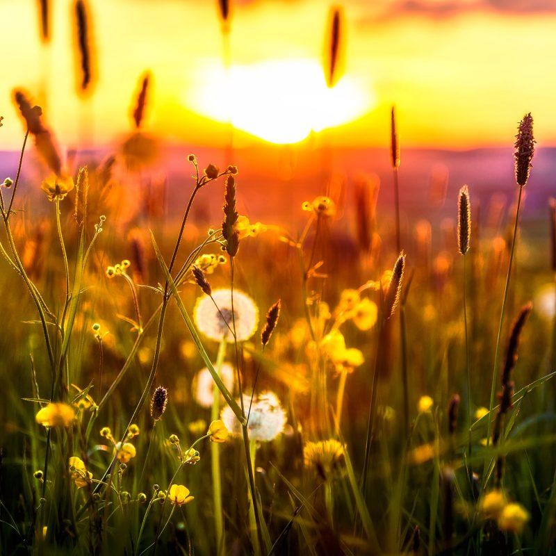 Genieße den Sonnenuntergang mit herrlichen Ausblick.